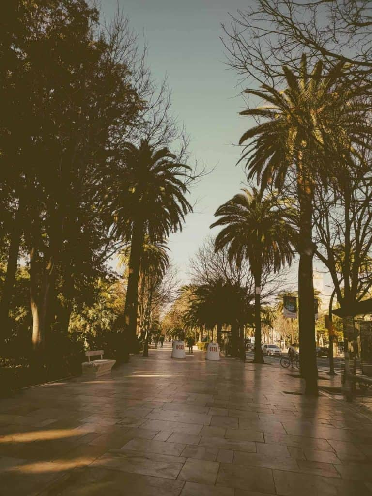 IMG 20190226 101100 768x1024 - Faszination Reisen #2 - Malaga - Marbella - Gibraltar