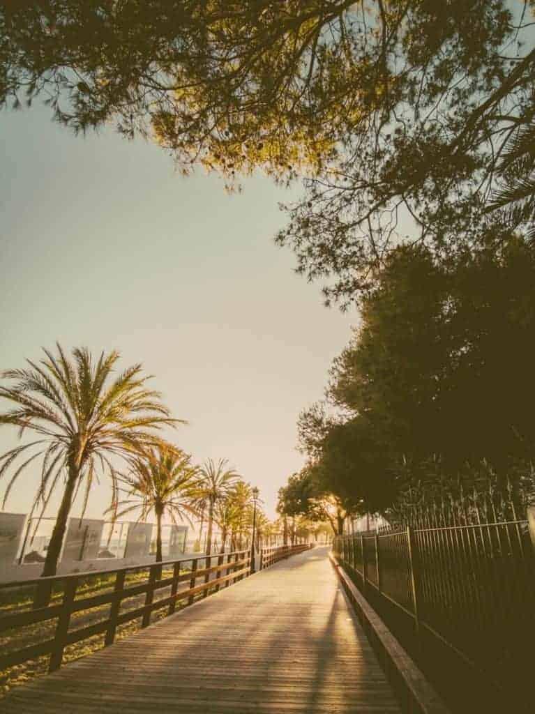 IMG 20190226 183539 767x1024 - Faszination Reisen #2 - Malaga - Marbella - Gibraltar