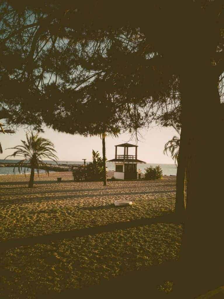 IMG 20190226 183739 767x1024 - Faszination Reisen #2 - Malaga - Marbella - Gibraltar