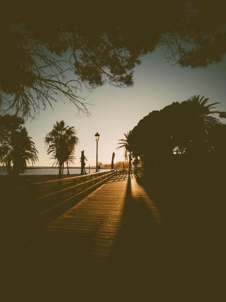 IMG 20190226 183749 767x1024 - Faszination Reisen #2 - Malaga - Marbella - Gibraltar