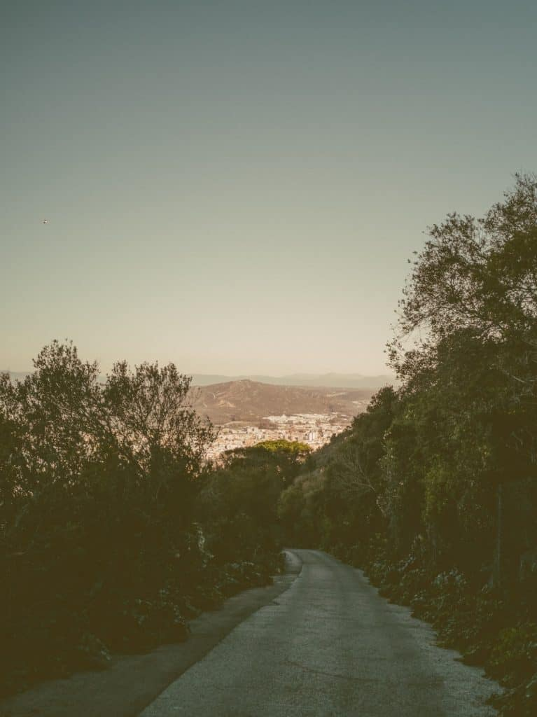 IMG 20190227 101334 767x1024 - Faszination Reisen #2 - Malaga - Marbella - Gibraltar